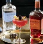 Slow Gin Hayman's cocktail
